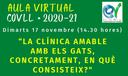"""""""La clínica amable amb els gats en què consisteix?"""" , el 17 de novembre a l'Aula Virtual del COVLL"""