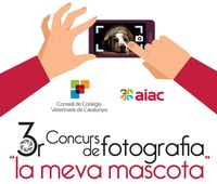 """Al febrer, exposició a la Biblioteca de Lleida del III Concurs de Fotografia """"La meva mascota"""""""