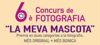 """En marxa el 6è Concurs de Fotografia """"La Meva Mascota"""""""