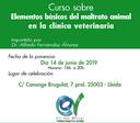 Curs subvencionat sobre com detectar, actuar i fer un certificat d'un maltractament animal, el 14 de juny al Col·legi de Lleida