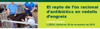 """Jornada al PCiTAL (Lleida) sobre """"El repte de l'ús racional d'antibiòtics en vedells d'engreix"""", dimecres 28 novembre amb la col·laboració del COVLL"""