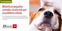 "Webseminar gratis pels col·legiats sobre ""Blefaritis en pequeños animales, mucho más que un problema cutáneo"", el dijous 25 de febrer"