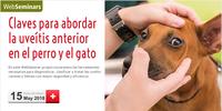"""Webseminar gratis pels col·legiats sobre """"Claves para abordar la uveítis anterior en el perro y el gato"""", el 15 de maig"""
