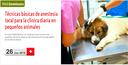 """Webseminar gratis pels col·legiats sobre """"Técnicas básicas de anestesia local para la clínica diaria en pequeños animales"""", el dimarts 26 de juny"""