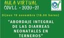 """Xerrada """"Abordaje Integral de las diarreas neonatales en terneros"""", el dijous 19 de novembre (18.00 hores)"""