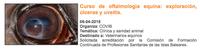 """""""Curs d'oftalmologia equina: exploració, úlceres i uveïtis"""", a Palma el 6 d'abril"""