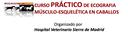 """""""Curso Teórico Práctico de Ecografía Músculo Esquelética en el Caballo"""" els dies 9 i 10 de març"""