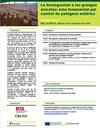 Jornada IRTA-CReSA - Bioseguretat en granges de broilers i patògens entèrics, el 19 de setembre a Bellaterra