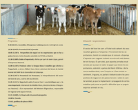 """Jornada tècnica de Boví de Carn """"Exportació: salvaguarda de la nostra economia"""", el dijous 30 de novembre a Tarragona"""